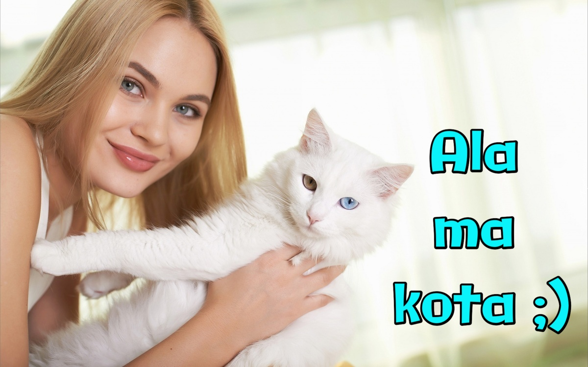 Ala ma kota ;