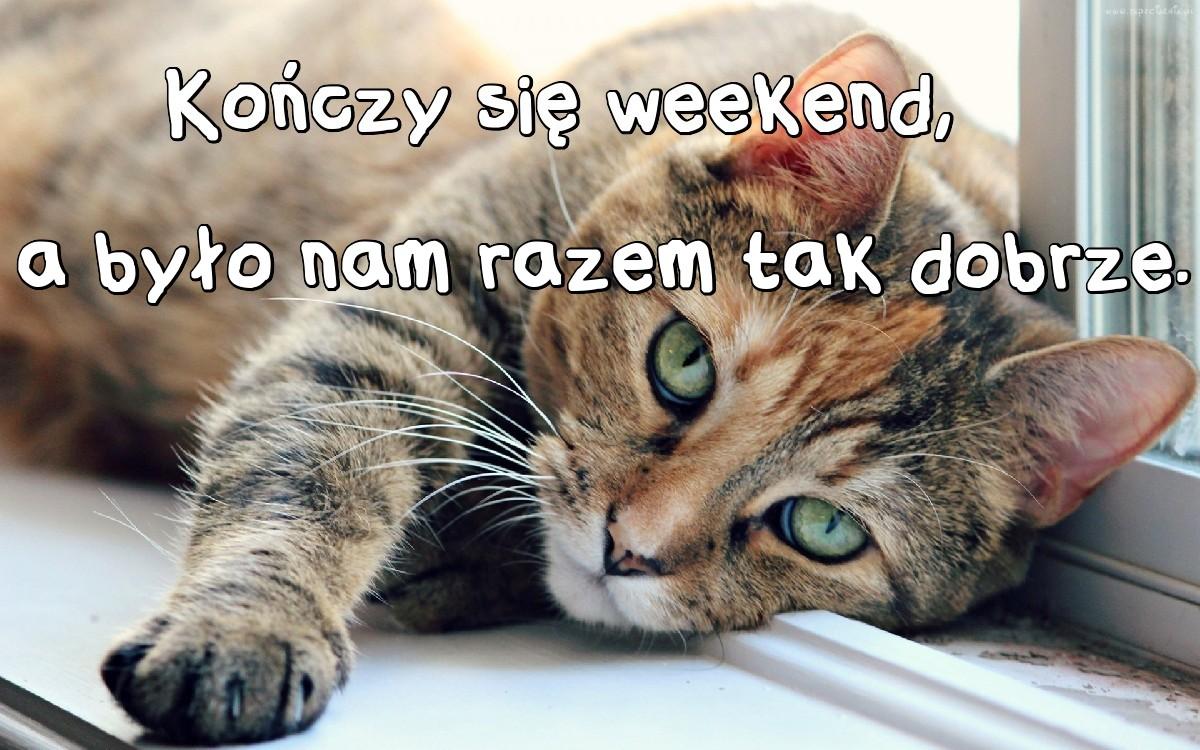 Memy Weekendowe
